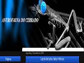 Blog Anurofauna do Cerrado