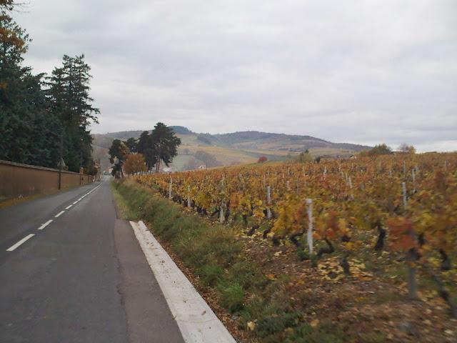 beaujolais près de st vérand