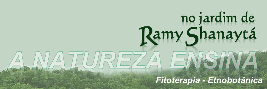 No jardim de Ramy Shanaytá
