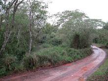 Los caminos de mi provincia