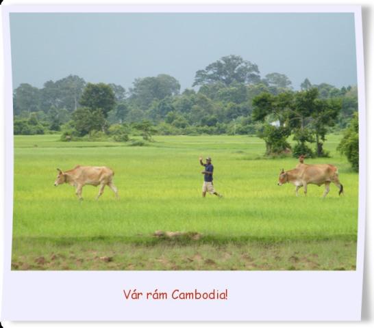 Vár rám Cambodia!