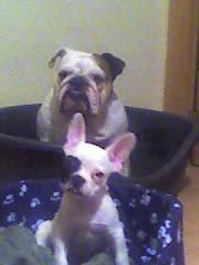 Lola y Benito