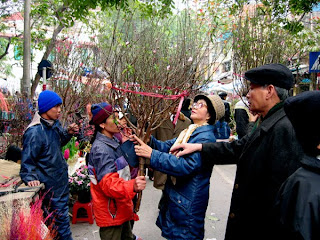Hang Luoc street - Colour culture street in Tet (New Year)