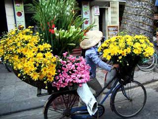 Flower kiosk - A feature in Hanoi