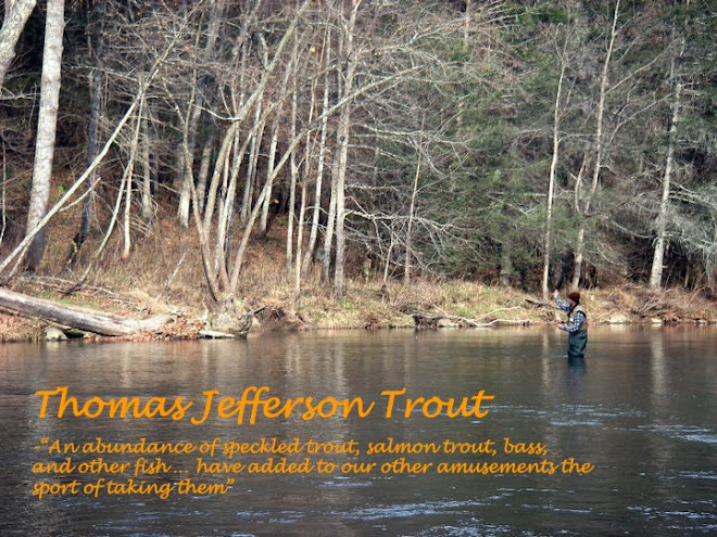 Thomas Jefferson Trout