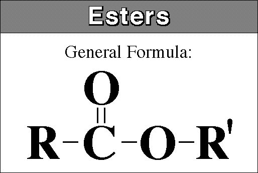 Esters Functional Group Esters The Functional Group