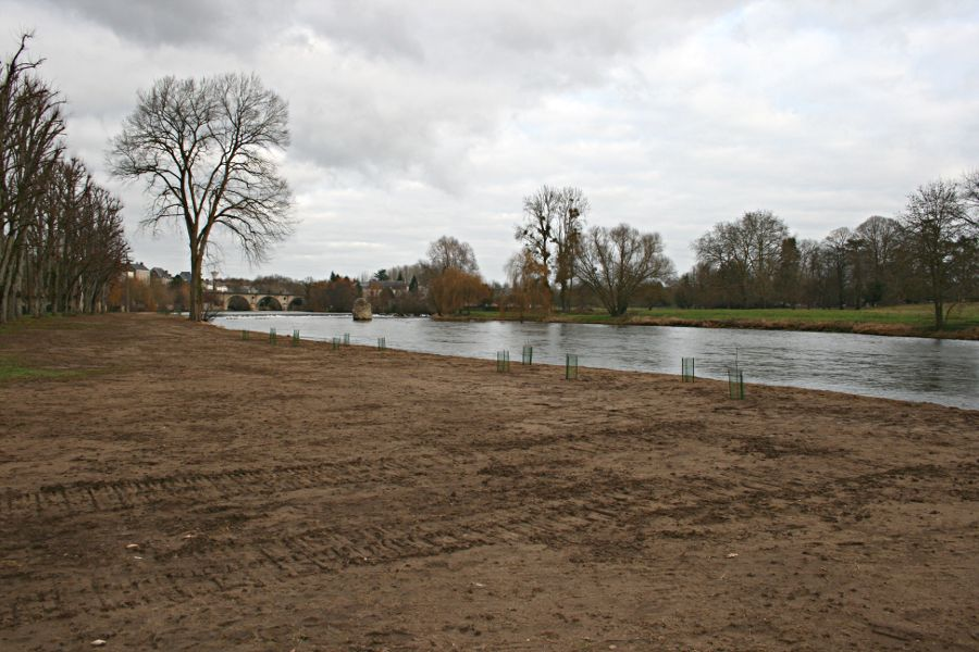 river and newly planted river bank