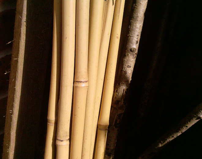 BAMBOO POLES AND UPRIGHT WOOD