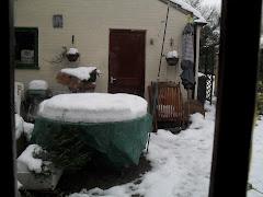 Outside the back door