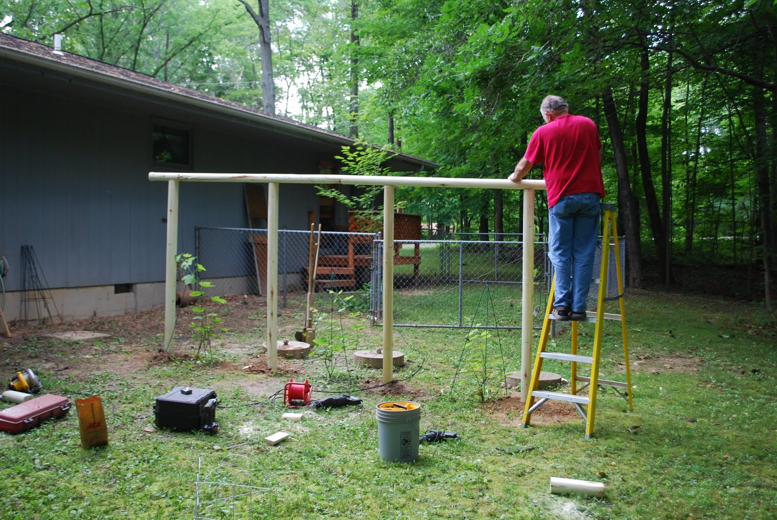 I Helped Dad Build A Grape Arbor In My Parents Back Yard On Memorial Day  They Still Need To Stain It, But I Think It Should Work Out Well