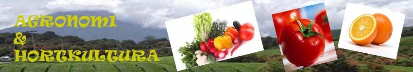 Agronomi dan Hortikultura (AGH)