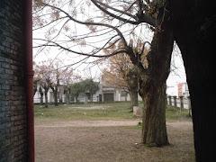Invierno en el Liceo Nº2