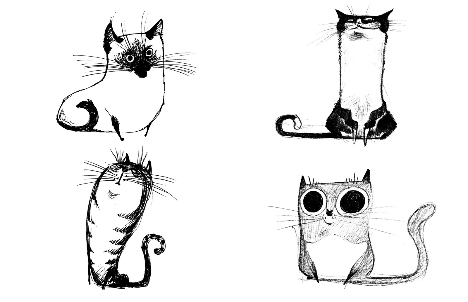 Manny 39 s stuff felines for Funny simple drawings