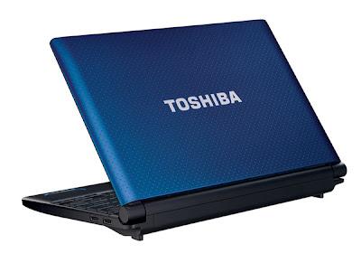Toshiba NB550D-1002B