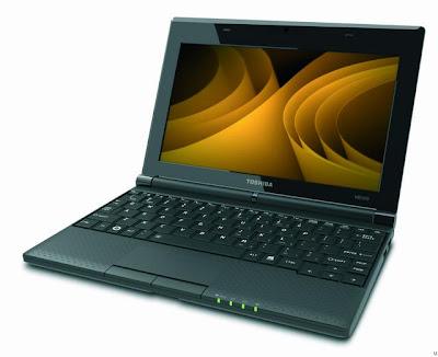 Toshiba NB505-1007