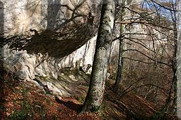Túnel en la roca