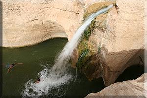 Cascada en el Oasis de Tameghza
