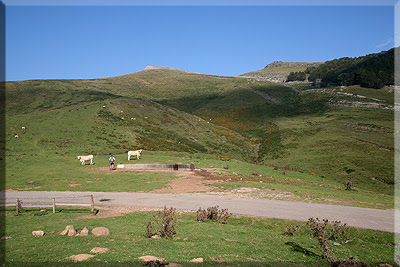 Camino a Urkulu desde el cromlech de Azpegi