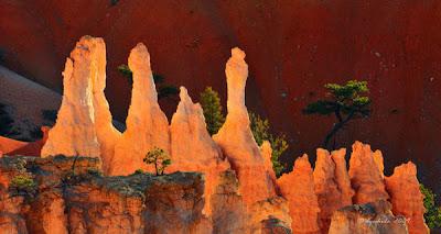 Canionul Bryce