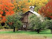 Когда-то был дом, в котором всегда жила осень