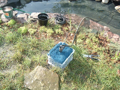 My cheap diy mechanical pond filter for Mechanical pond filter