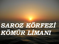 SAROZ KÖRFEZİ KÖMÜR LİMANI