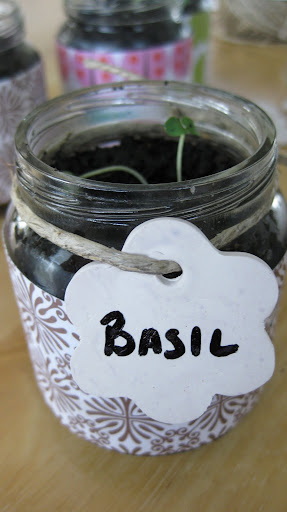 grow herbs in baby food jars, how to reuse baby food jars, baby food jar crafts, recycle baby food jars
