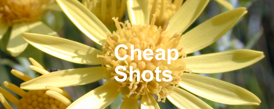 Cheap Shots