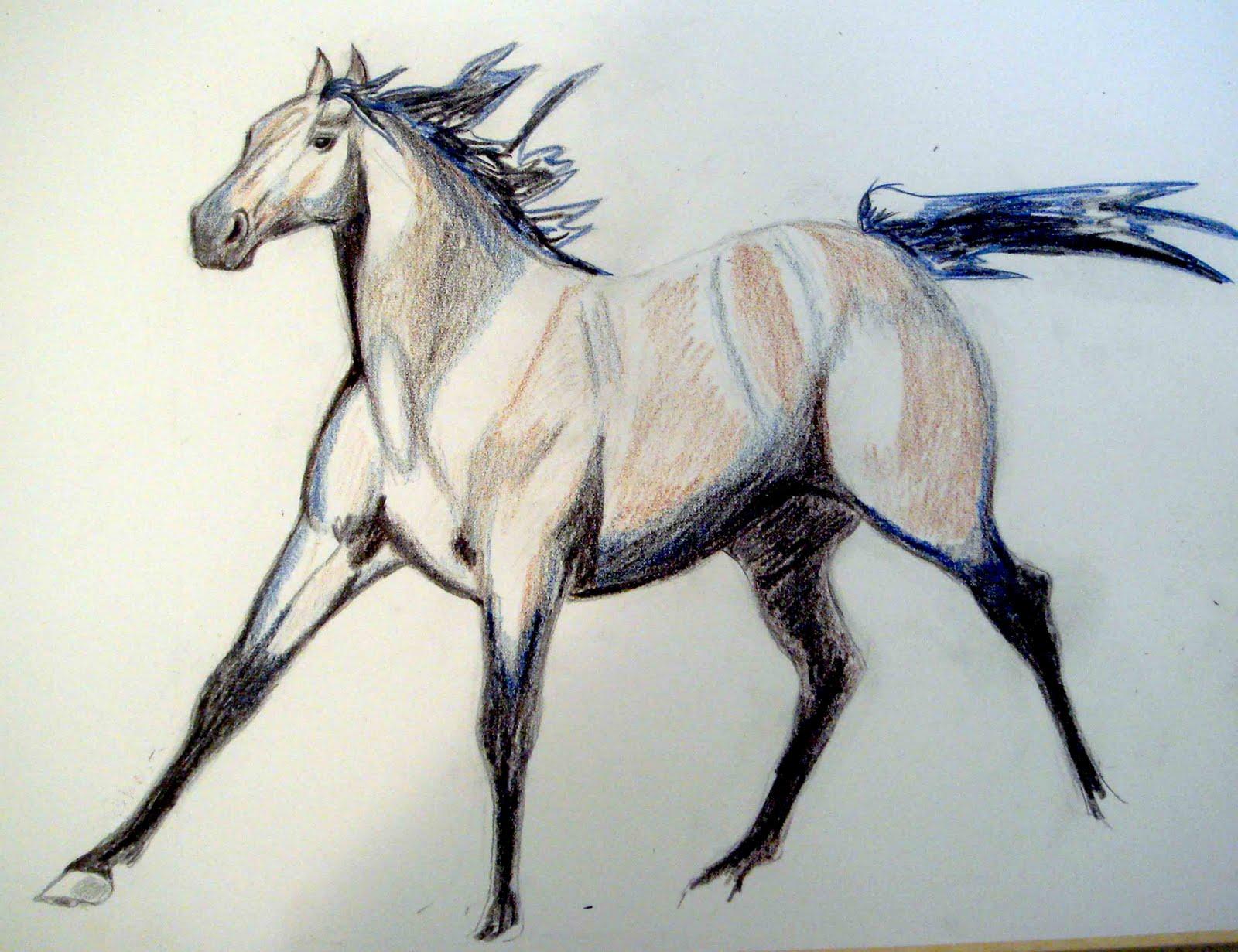 Cool   Wallpaper Horse Watercolor - QH  HD_85837.jpg