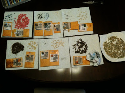 Garden-Seeds-Drying-Out