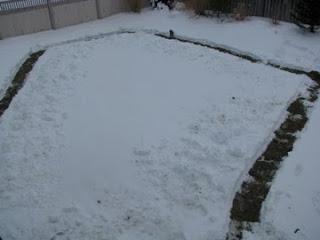 Italian-Greyhound-Snow-Weather