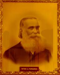 Peter Adolph Forsgren