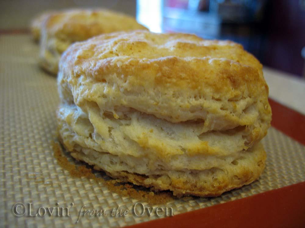 Frieda Loves Bread: Secrets to Buttery, Flaky Buttermilk ...