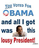 You voted for Obama; I got this t-shirt and a lousy President!