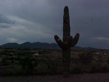 Storm clouds behind the Saguaro