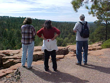 Overlooking the Mogollon Rim