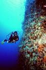 diving+atoll.jpg