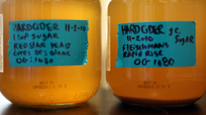 home brew or die: first batch of cider