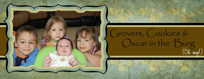 Grovers, Cookie & Oscar in the 'Burg