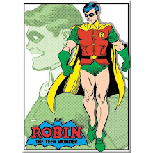 Robin Boy Wonder Magnet