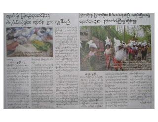 >Burmese Journals Digest – July 11th 2008