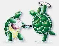 Grateful Dead Terrapin turtles