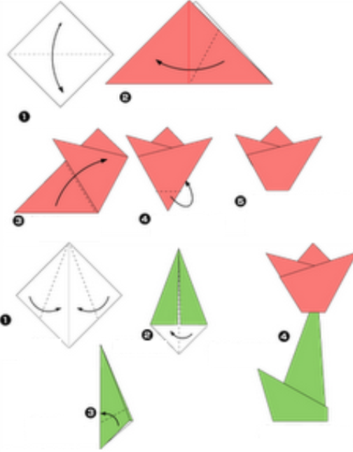 Gallery For gt How To Make Origami Tulip