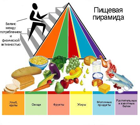 похудеть система питания