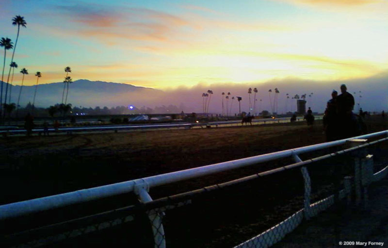 Morning fog at Clockers Corner