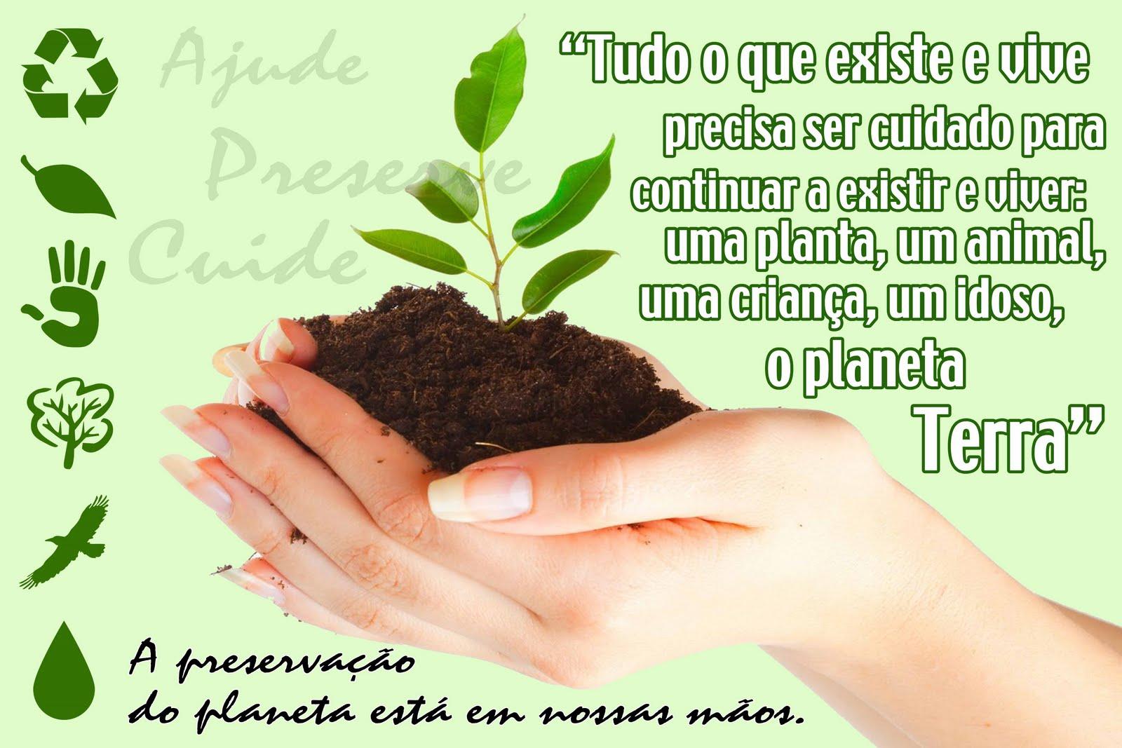 Well-known Frases Sobre Preservação Do Meio Ambiente SI18