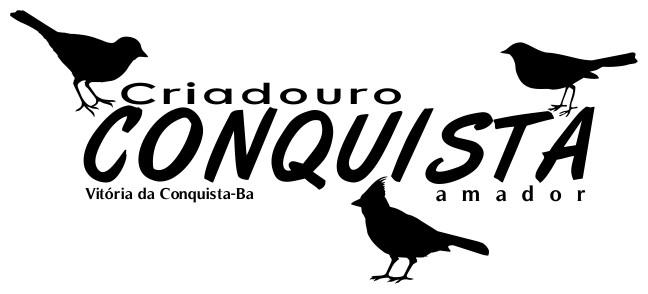 Criadouro Conquista - CANÁRIO DA TERRA E OUTROS