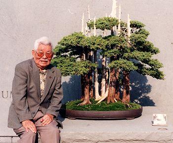 Inilah bonsai-bonsai terbaik dan termahal di dunia