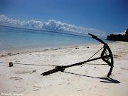 Calangaman island beach near Malapascua