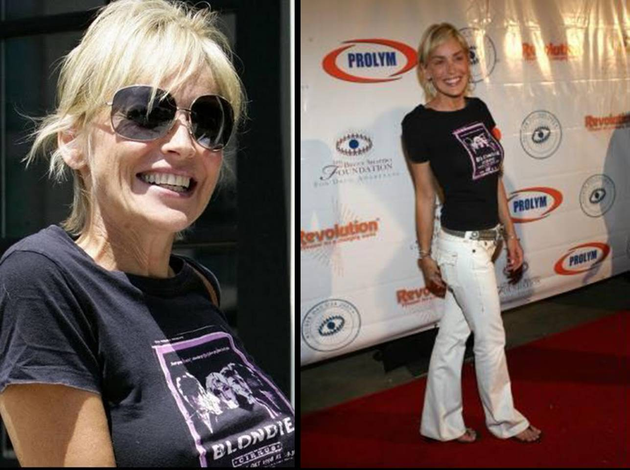 http://1.bp.blogspot.com/__RGPBBnf8b8/TGrptg0egrI/AAAAAAAADWo/8ksi-uf-lDQ/s1600/sharon+stone++-++Blondie.jpg